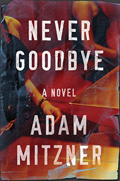 (2018) Never Goodbye (Broden Legal Book 2) by Adam Mitzner
