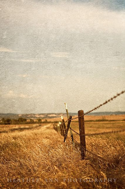 Vintage Country (2) | Barbed wire fencing, Wire fence and Country life