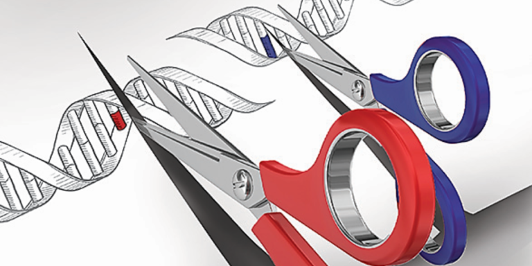 New gene-editing technologies are revolutionizing biology by giving scientists the tools to dramatically alter organisms' DNA and resulting physical traits. What will we do with this new power? And what have we already done?