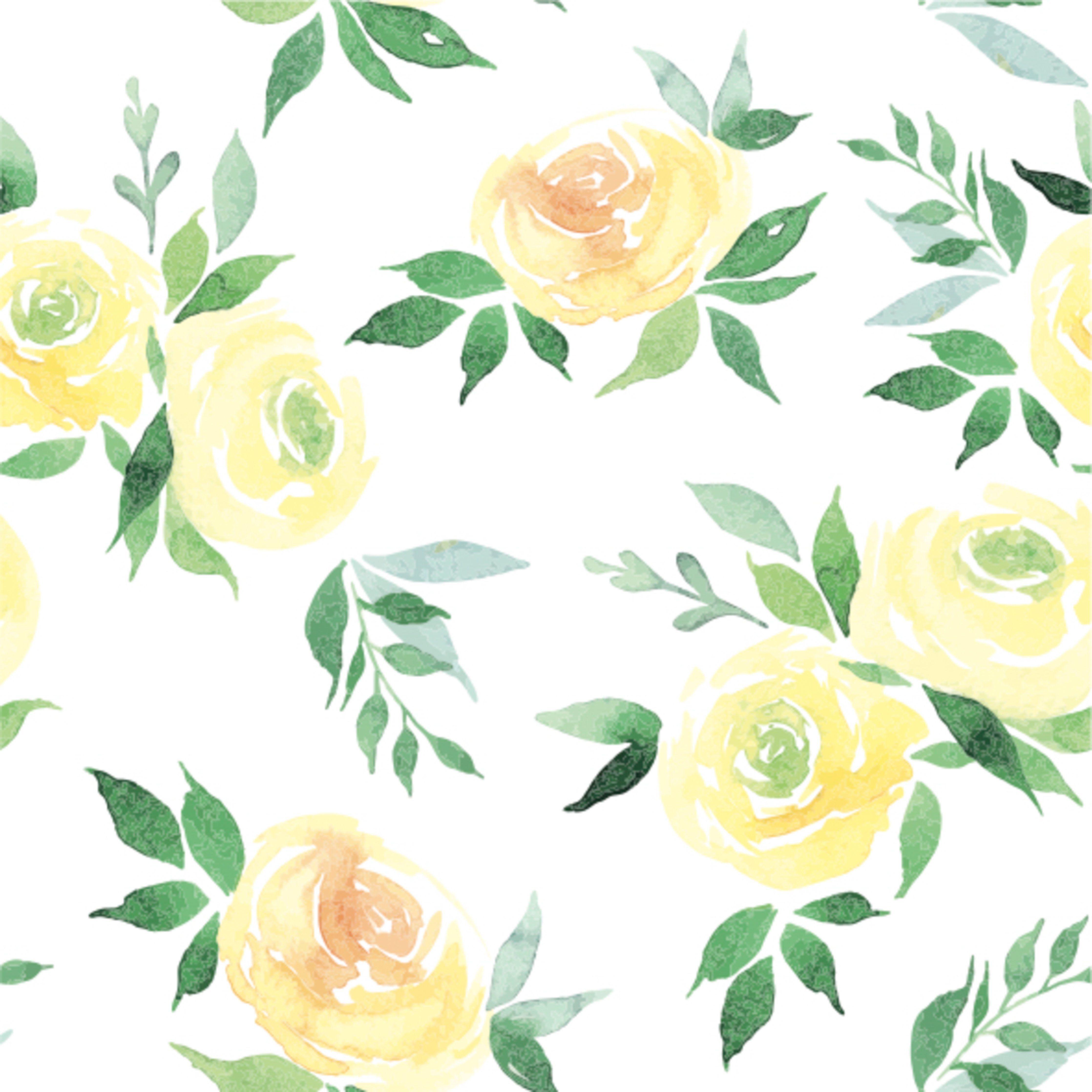 Cheyenne Wallpaper yellow rose paint Watercolor flower