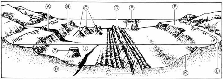 seafloor diagram labeled