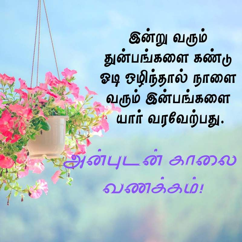 Good Morning Message For Lover In Tamil Google Search Morning Messages Good Morning Messages Messages
