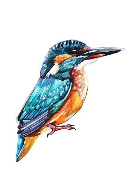 Watercolour Birds For Tsz Shan Monastery Watercolor Bird