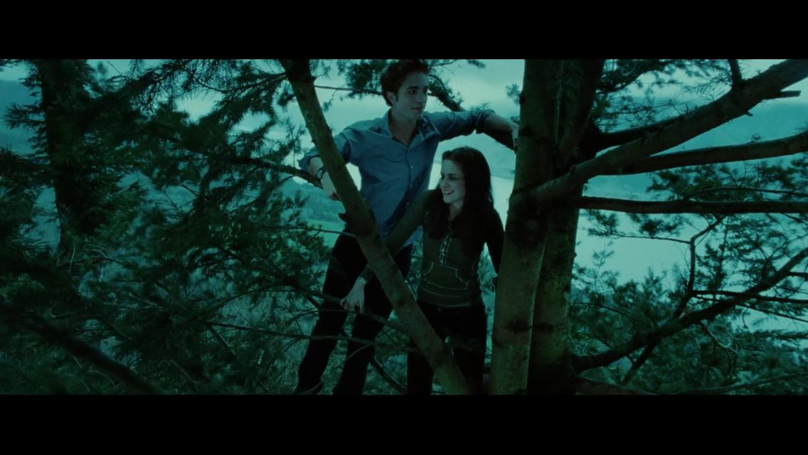 I would love to be bella twilight pictures twilight