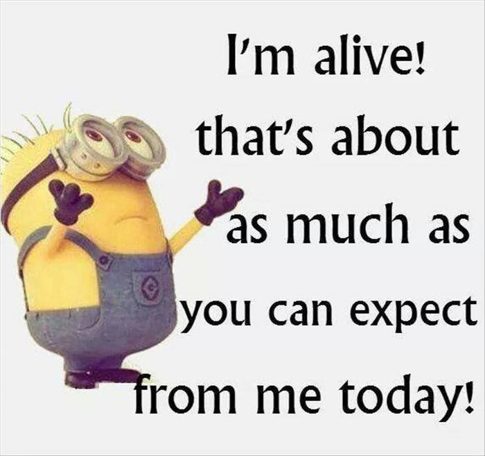 Joke For The Day, Minions Minions, Funny Quotes, Jokes, Laughter, Medicine,  Medical Science, Memes, Funny Pranks