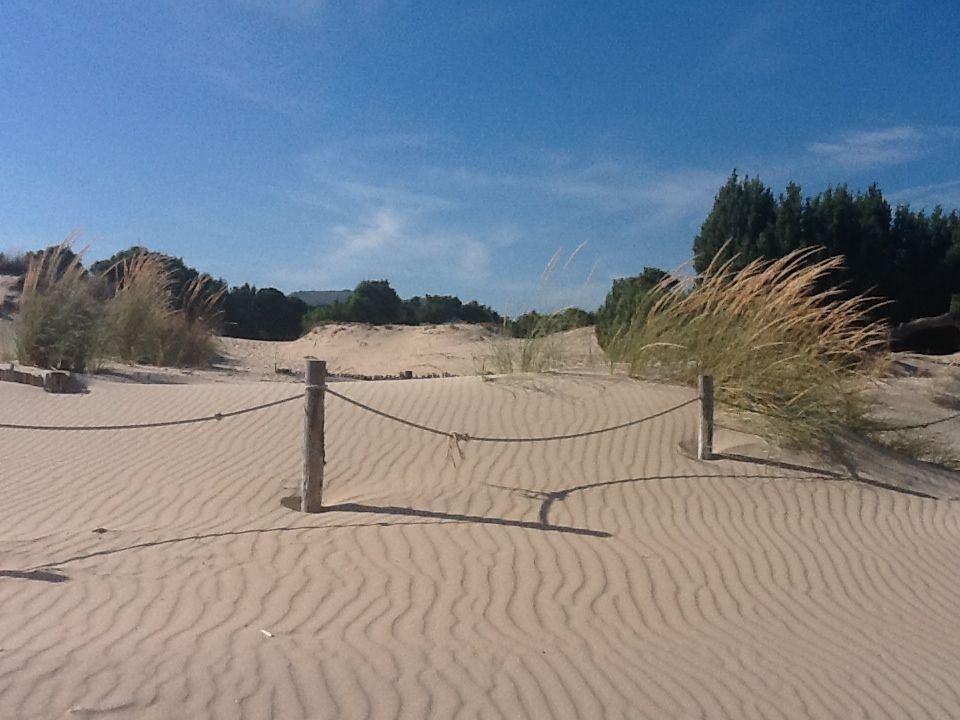 The soft sand dunes of Chia    #sardinia #sardegna  http://www.sardegna.com/it/blog/strada-panoramica-costa-del-sud/