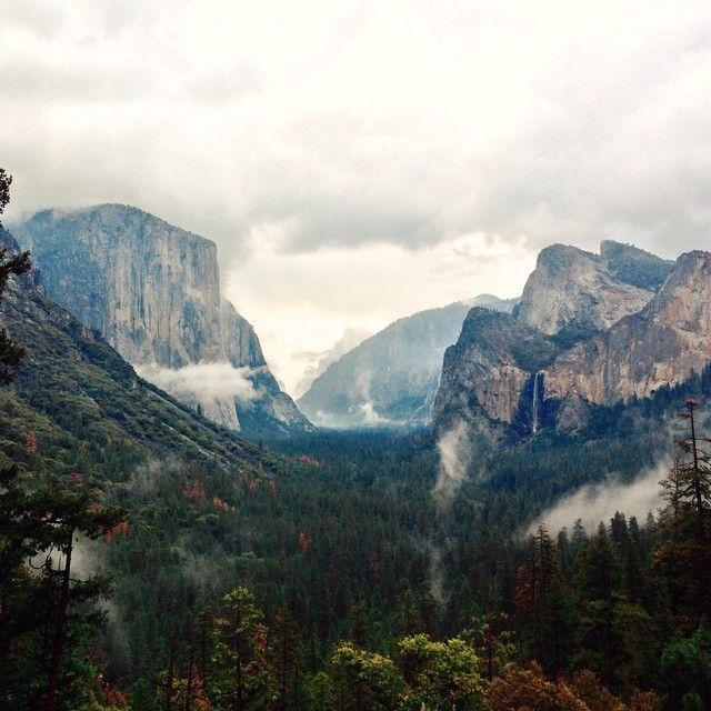 Yosemite Valley from the tunnel | VSCO #kk1 {photo by @smuddu}