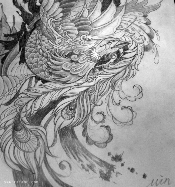 Japanese Tattoo Line Drawing : Traditional japanese phoenix drawing google search