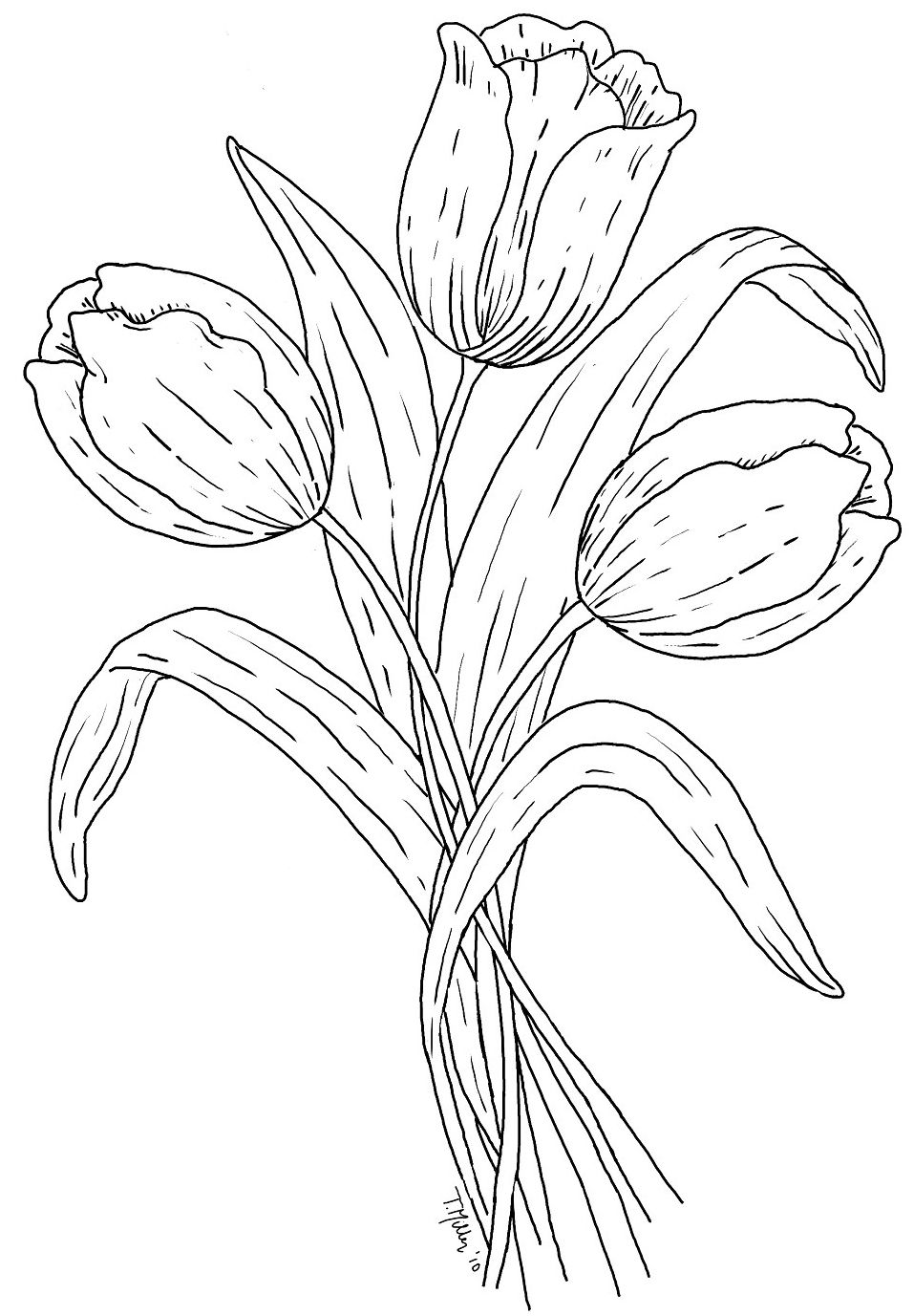 free digi stamps tulips and children u0027s coloring pages
