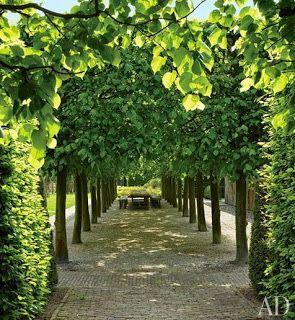 Belgian style: Landscape
