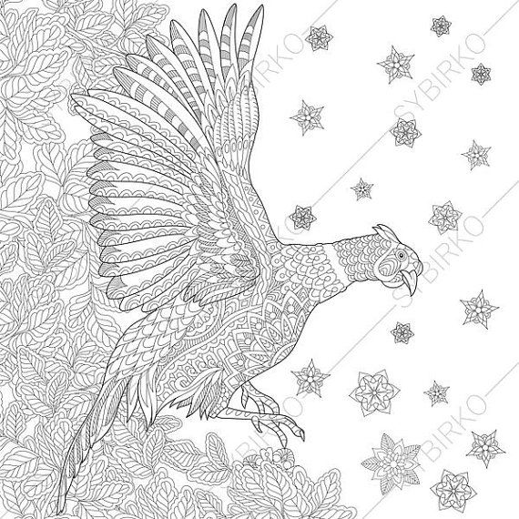 Pheasant Bird 2 Coloring Pages