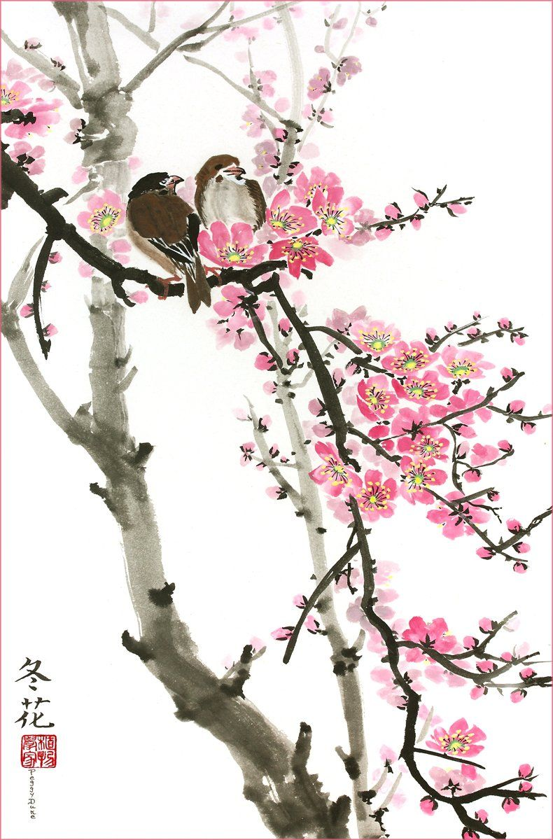 Love Birds On The Cherry Blossom Tree White Background Giclee Print Flower Picture Of Two Birds Pe Cherry Blossom Painting Blossoms Art Cherry Blossom Art