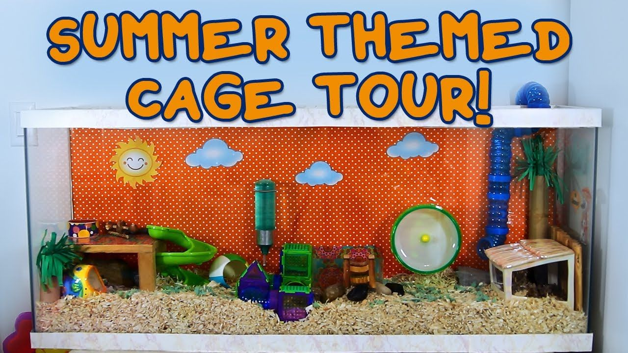 Summer Themed Hamster Cage Tour Hamster Cage Pet Rodents Hamster
