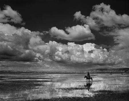 Wetlands-6-3 Photo by Xiaoyun Zheng -- National Geographic Your Shot