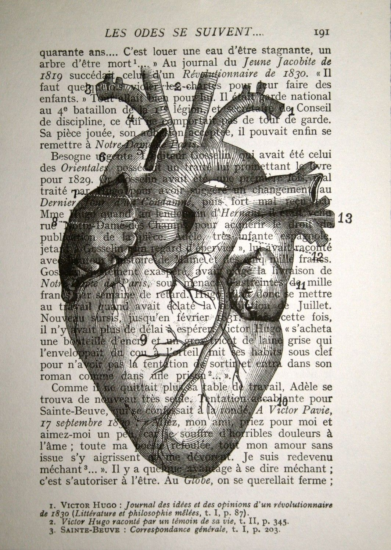 Anatomical Heart Print Human Heart Anatomy Print Anatomy Art