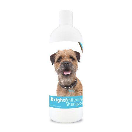 Healthy Breeds Border Terrier Bright Whitening Dog Shampoo 12 oz #0: 568c29f4df2b76bf9f57c37f2572adef