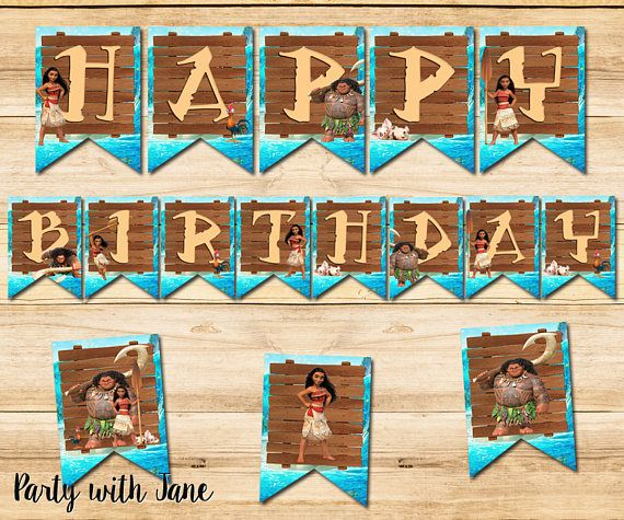 Party Bunting Princess and Pirate Birthday Banner Decoration