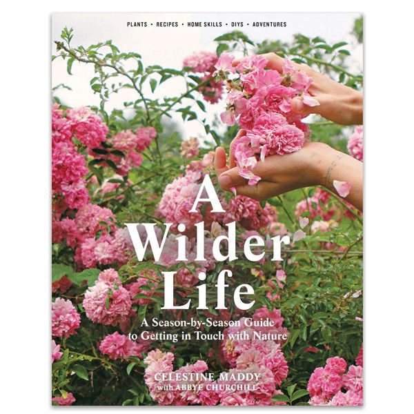A Wilder Life - Cris Figueired♥