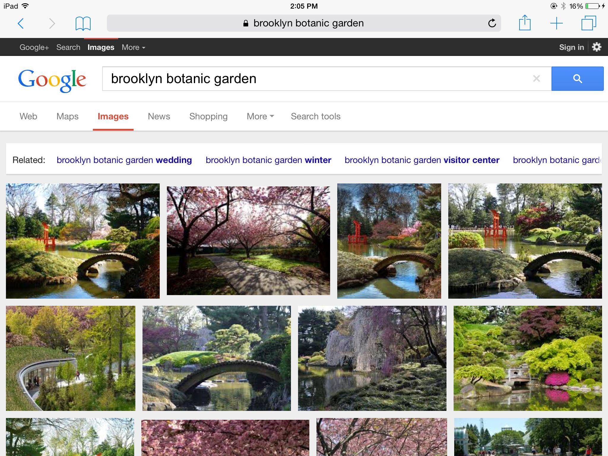 Brooklyn botanic garden Garden web, Botanical gardens