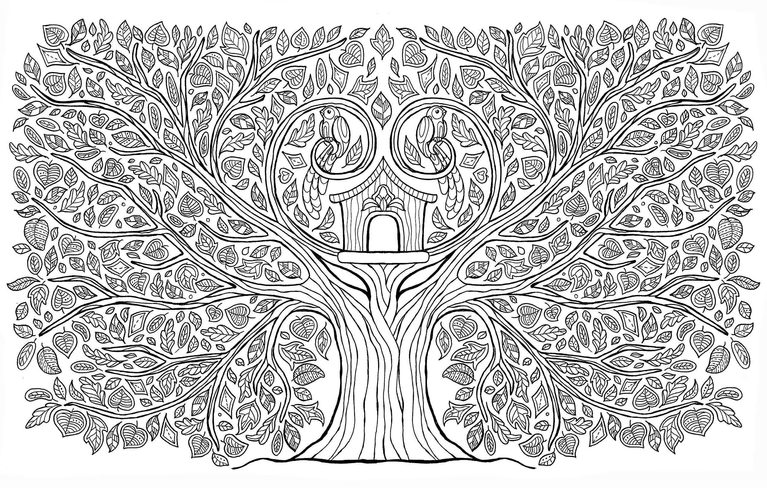 150 coloriages pour se détendre et s'évader  Coffret en 3 volumes  Oiseaux de paradis ; Jardin des délices ; Arbres de vie (1CD audio) Amazon co uk Marica Zottino, Rustica 9782815306126 Books is part of Tree coloring page -