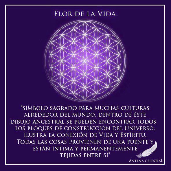 Mandala Flor De La Vida Pal Taal