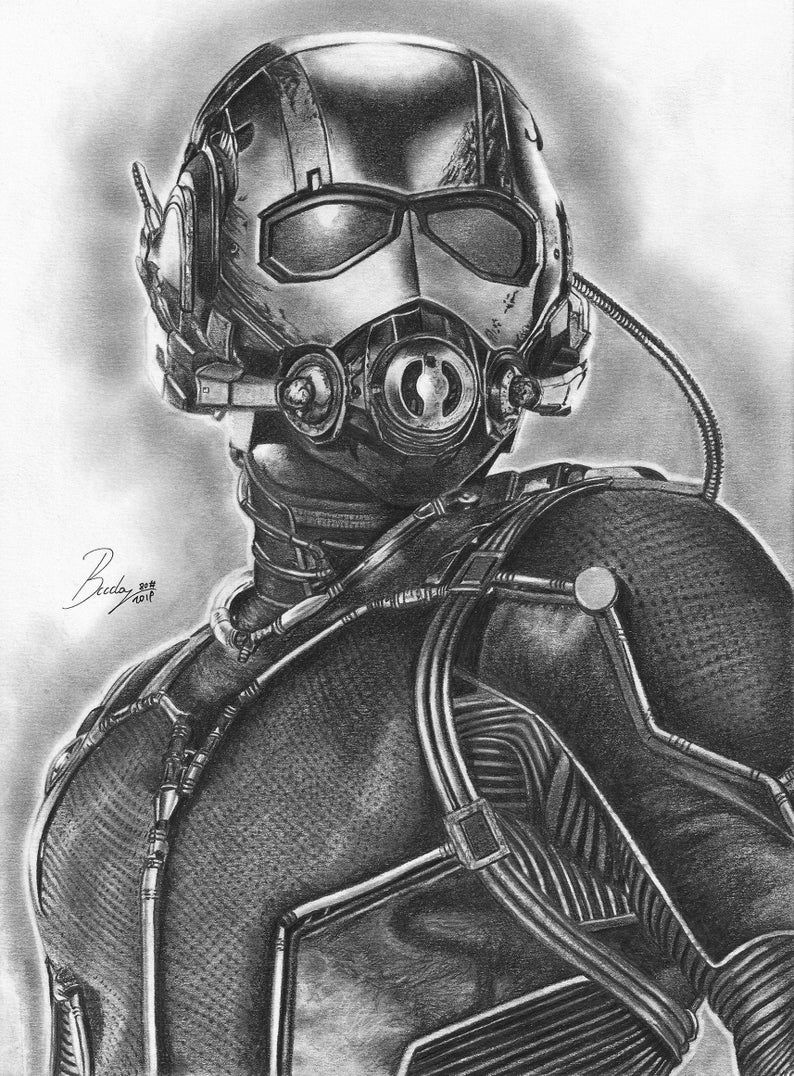 Antman High Quality Prints Of My Pencil Works Various Sizes Etsy In 2020 Marvel Drawings Marvel Art Drawings Superhero Sketches