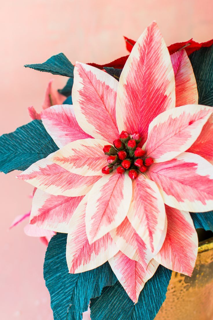 Paper Poinsettia Flowers Paper Flowers Diy Poinsettia Flower