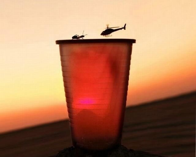 Ant vs Helicopter @TimedPerfectly