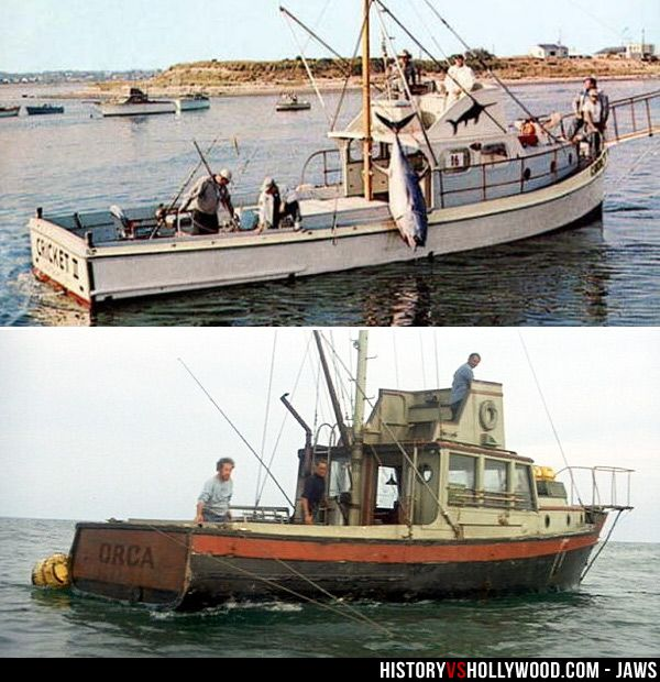 Is Jaws A True Story Learn The Real Inspiration For Jaws Jaws Boat Boat Orca