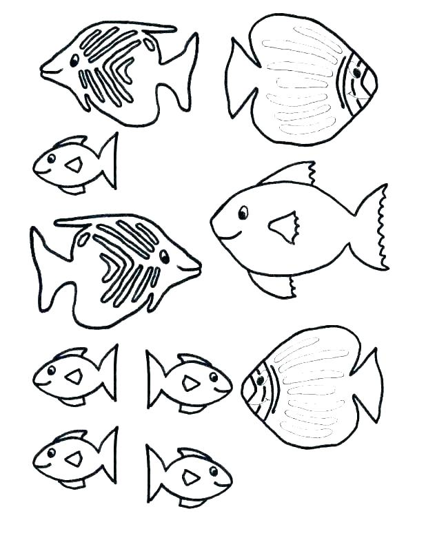 Fish Coloring Pages Print Fish Coloring Pages Printable Of Clown Page Print Rainbow Free Small Fish Coloring Pa Fish Template Fish Coloring Page Coloring Pages