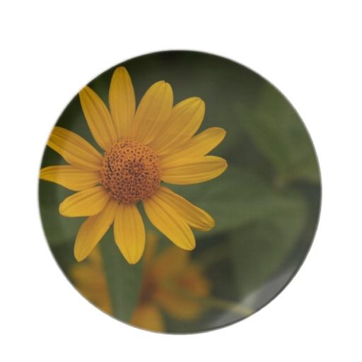 Yellow Dasiy (Heliopsis) Party Plates