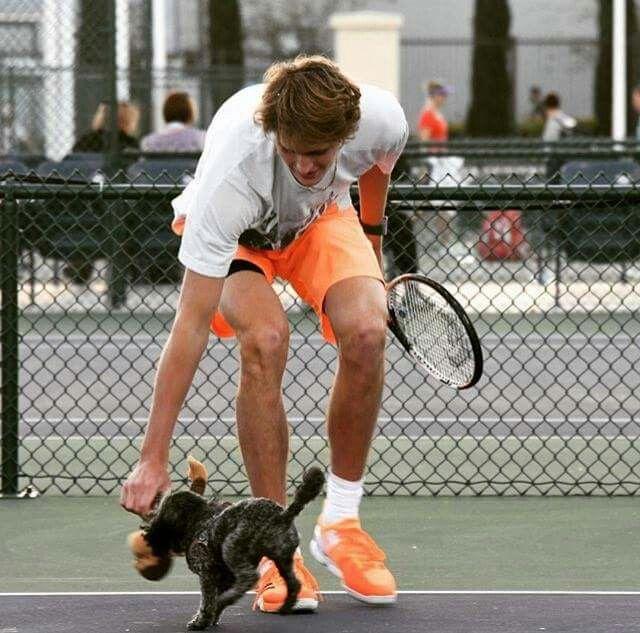 Sascha Zverev and pup.
