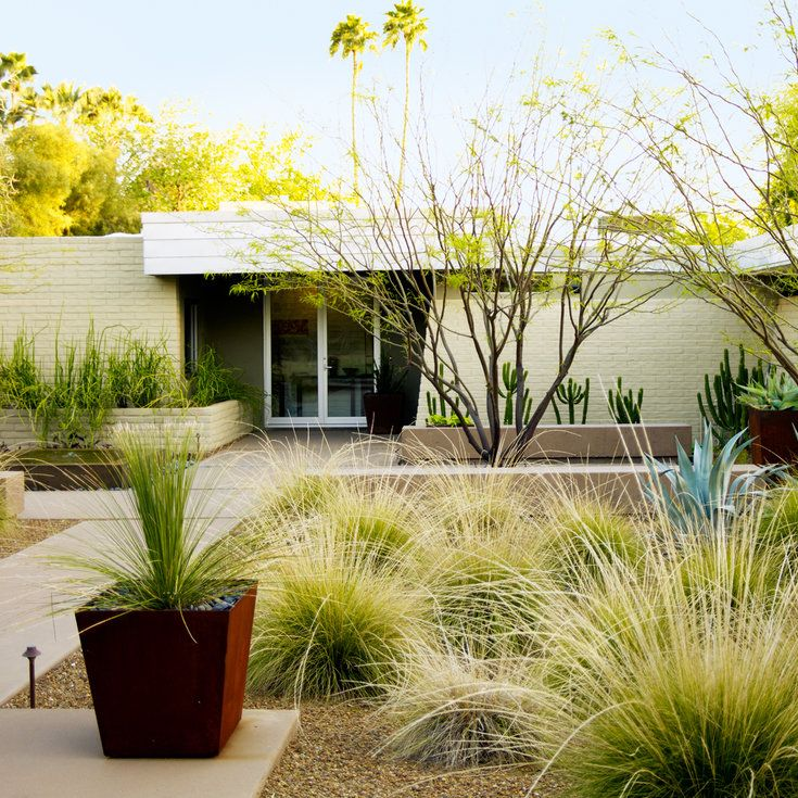 Lawn Begone 7 Ideas For Front Garden Landscapes: Desert Landscaping Ideas From A Phoenix Front Yard