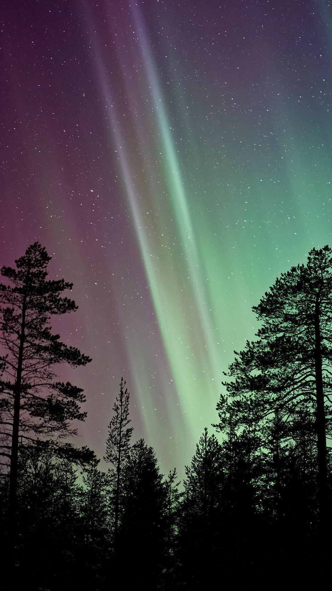 Pin by Jennifer McMinn on Wallpapers Northern lights