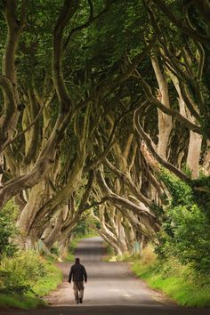Walking through the Dark Hedges - Northern Ireland (by Bar Artzi)