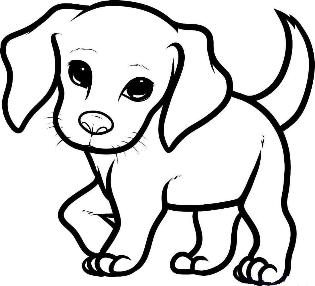 Beagle Coloring Pages Puppy Coloring Pages Dog Drawing Simple