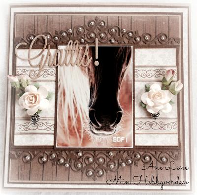 Min hobbyverden: Hestekort