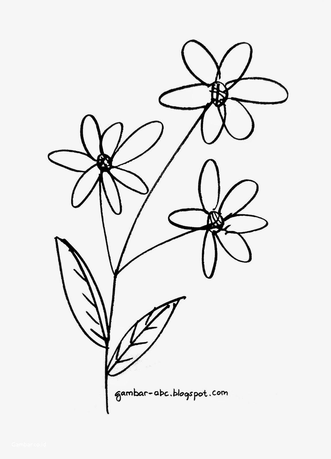 Koleksi Gambar Sketsa Bunga Yang Mudah Digambar