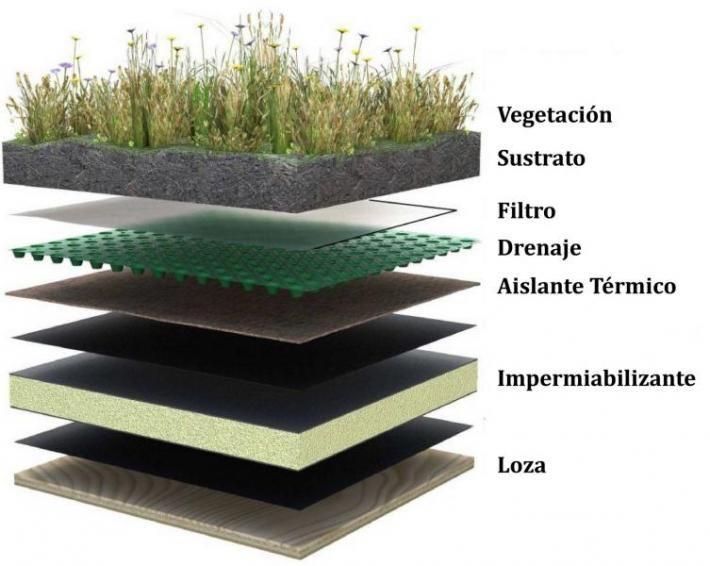 Techos Verdes Techos Verdes Fachada Verde Y Jardines