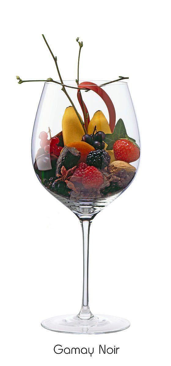 GAMAY NOIR  Raspberry, black currant, banana, plum, blackberry, almond, strawberry, orange peel, Branch, ivy, black pepper, juniper, clove, star anise, elastic, leather, iron