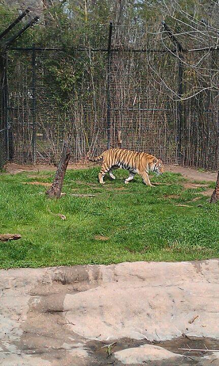 Louisiana Purchase Gardens Zoo Louisiana Purchase Zoo Louisiana