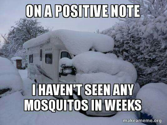 Pin By Nancy Player On Snow Days Funny Winter Quotes Winter Humor Camping Memes