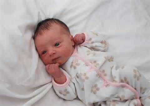 1 Day Old Baby Girl Bing Images