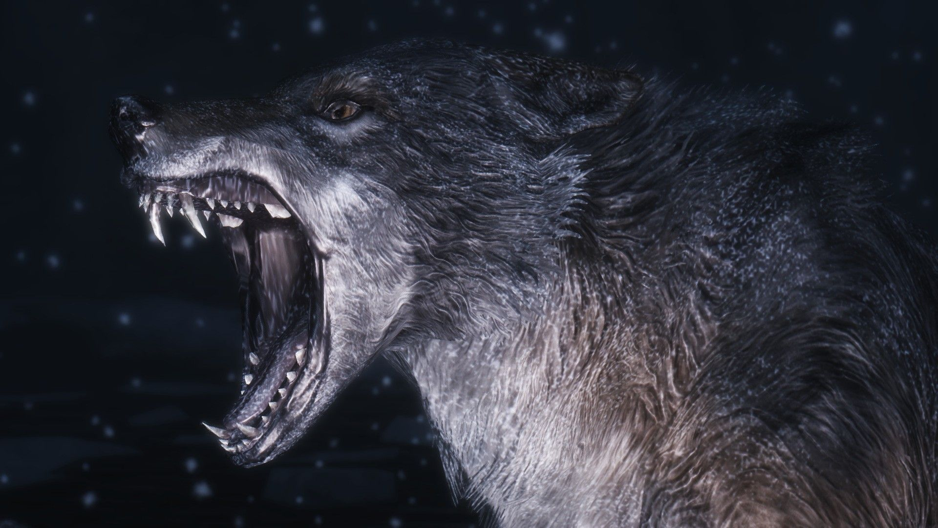 Hd wallpaper wolf - Find This Pin And More On Hd Wallpapers Nice Where Wolf Wallpaper
