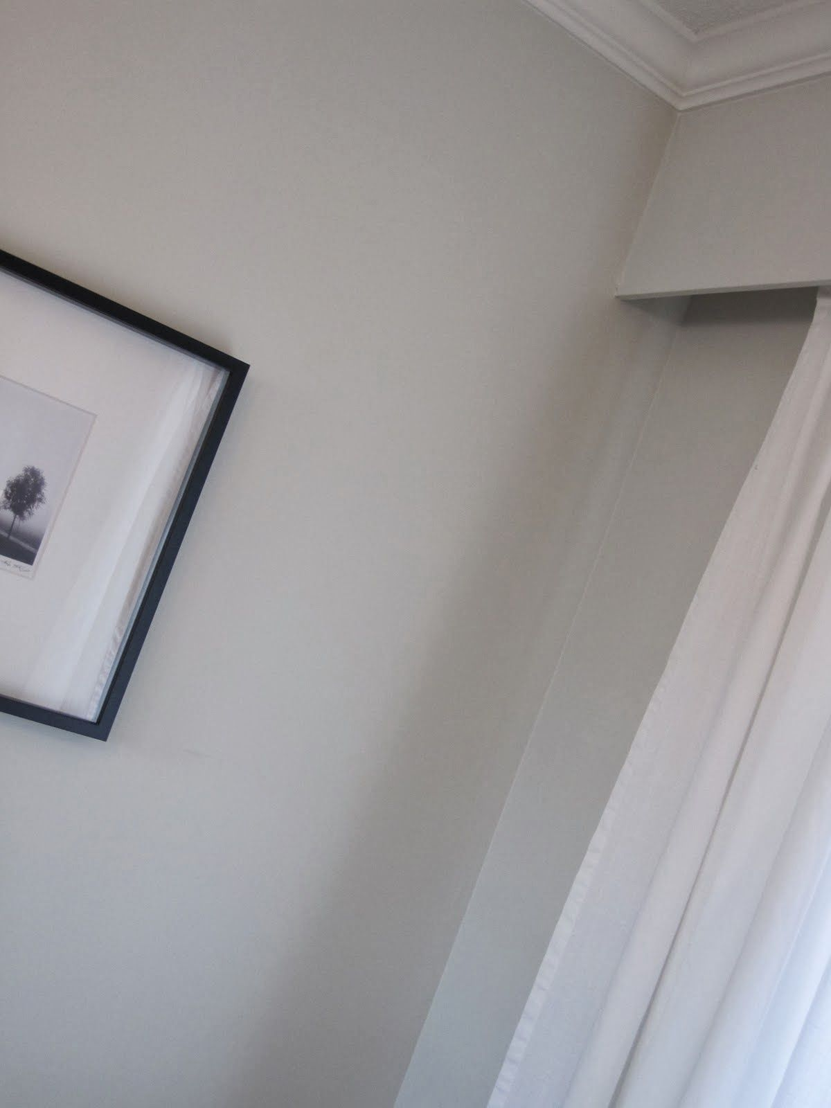 Intense White Vs Gray Owl Benjamin Moore Simply Styled