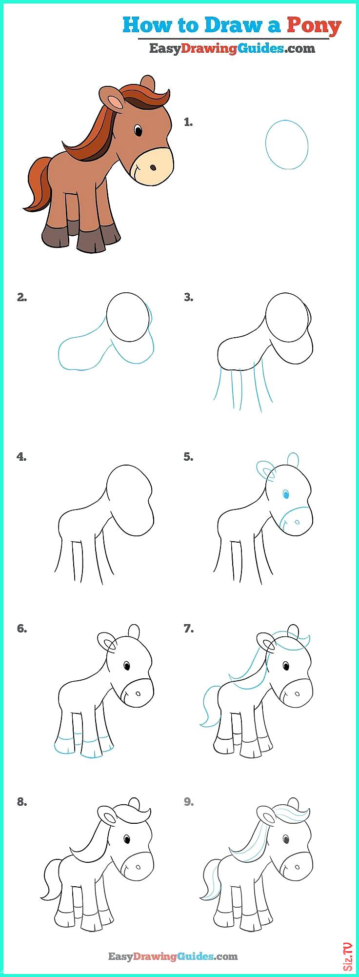 Lernen Sie wie Sie ein Pony finden Ein einfaches Lernprogramm ...