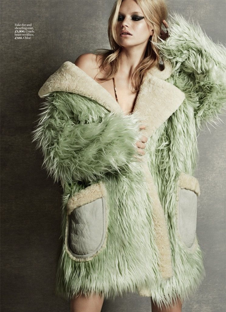fur editorial - Google Search