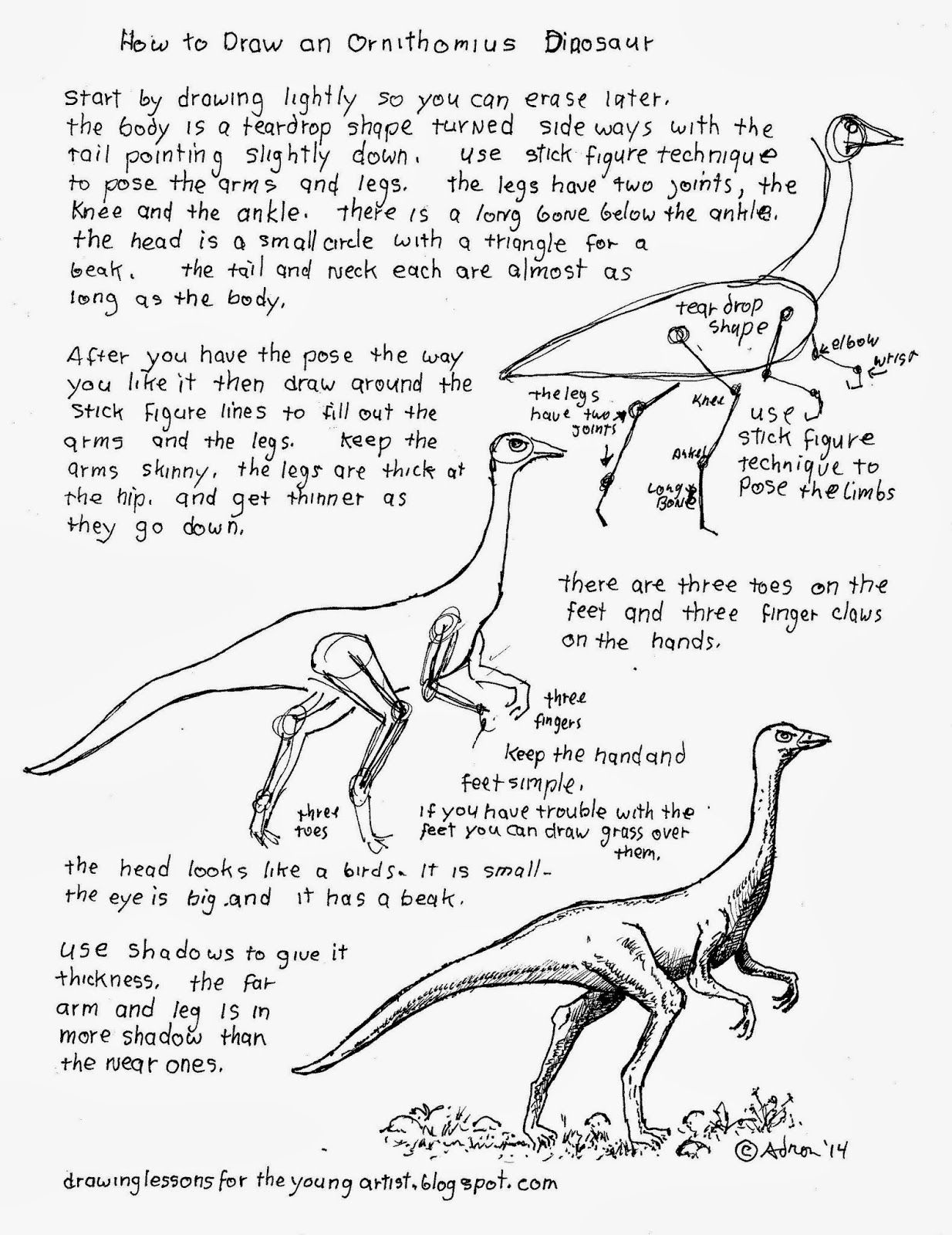 How To Draw An Ornithomimus Dinosaur Worksheet
