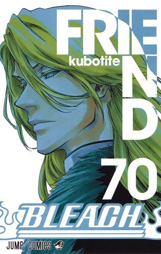 Bleach Manga Book