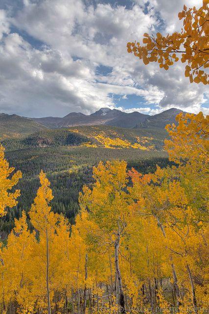 Bierstadt Lake Trail Rocky Mt National Park Colorado Explore Colorado Colorado Hiking Colorado Attractions